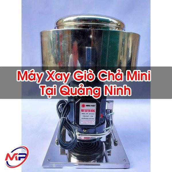Máy Xay Giò Chả Mini Tại Quảng Ninh