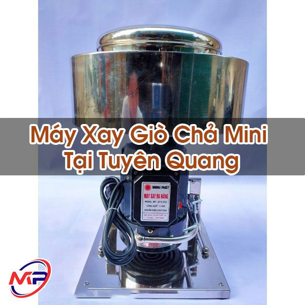 Máy Xay Giò Chả Mini Tại Tuyên Quang